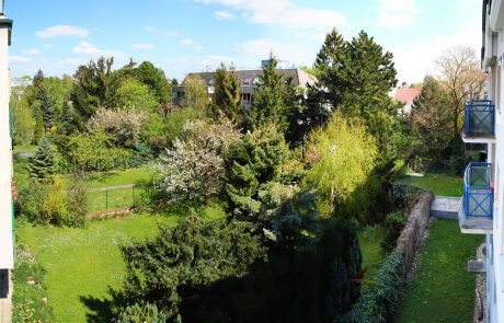 Praxis Hetzendorf Garten